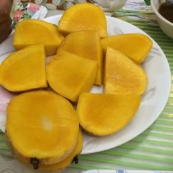 Classic Philippines mangoes!