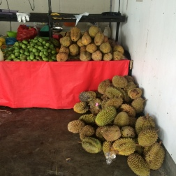 So much surplus of durian in Davao! They're literally sold everywhere