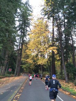 Running through Stanley Park