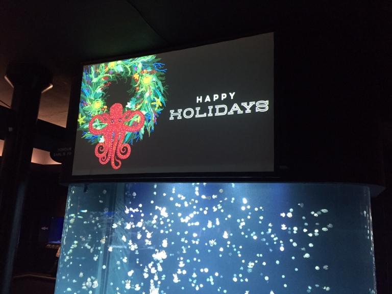 VanAqua-Happy-Holidays